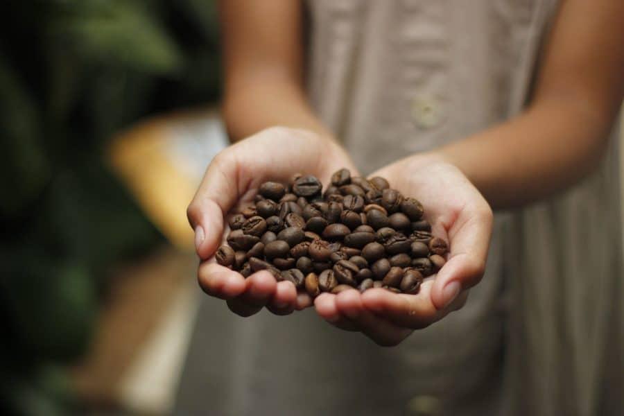cafe en grains equitable